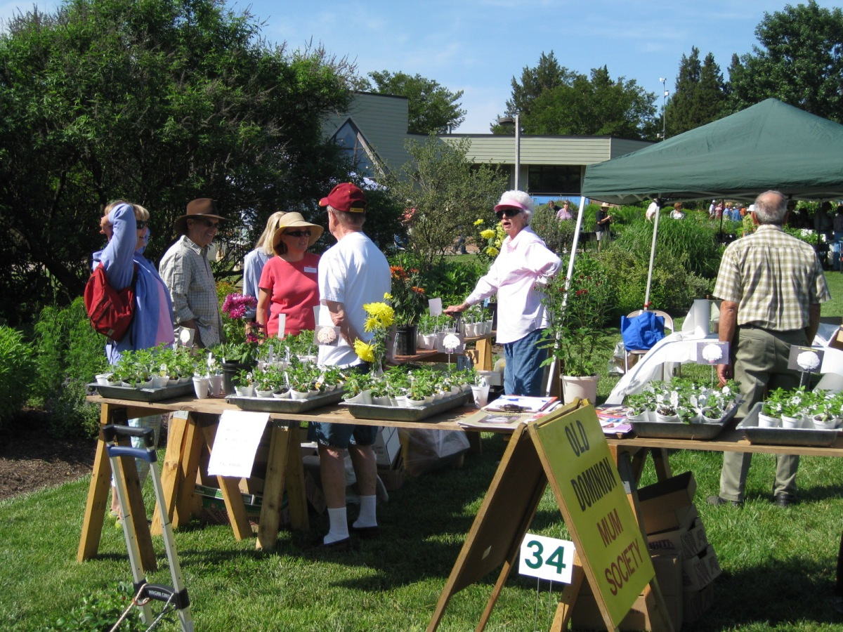 Plant sale - May 2012